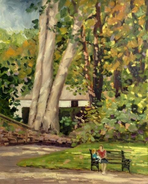 The Beech Trees Swindon Old Town Gardens Oils 10x8 Ins